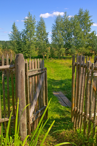 http://www.dreamstime.com/-image23425679