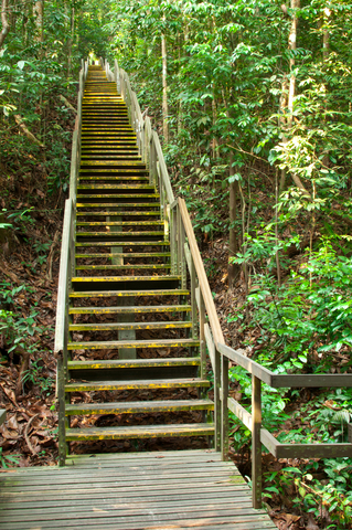 http://www.dreamstime.com/stock-photography-steep-wooden-staircase-challenge-image21301052